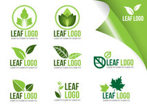 Collection Of Ecology Logo Symbols, Organic Green Leaf Vector Design Stock Photography