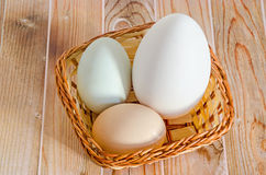 Collection of eggs, large white goose egg, light green duck egg, light brown chicken egg, brown basket with grass, wood royalty free stock images