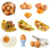 Eggs Collection Isolated Stock Images
