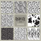 Collection of eight vector seamless patterns with animal skin zebra, leopard, jaguar, giraffe cow. royalty free illustration
