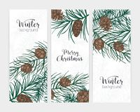 Collection of elegant vertical festive winter backgrounds with forest coniferous tree branches and cones and holiday. Lettering. Bundle of seasonal banner royalty free illustration