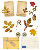 Collection elements for scrapbooking Royalty Free Stock Photo