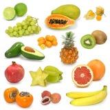 Collection exotique de fruits Images libres de droits