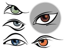 Collection of eye icons Royalty Free Stock Photo