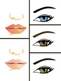 Collection of eyes and mouths. Vector illustration of eyes and mouths Royalty Free Stock Photography