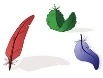 Collection of feathers. Red, green, blue. Vector vector illustration