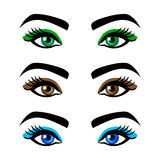 Collection  female eyes and eyebrows of  shapes, different colors, with  without makeup Royalty Free Stock Photo