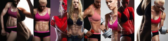 Collection of female sport bodies. Collage muscular girls. Collection of female sport bodies. Collage beautiful muscular girls. fitness woman, trained female stock photo