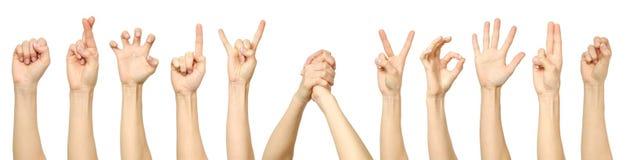 Collection femelle de gestes et de signes de main d'isolement Image libre de droits