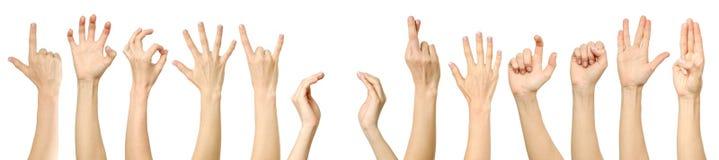 Collection femelle de gestes et de signes de main d'isolement Photographie stock libre de droits