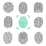 Collection of Fingerprints on Vector Illustration. Collection of fingerprints, colorless images of prints of human and colorful one in frame, items on vector Stock Photo