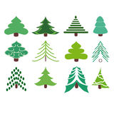 Collection of fir trees. Vector illustration. A set of several variety of firs Stock Photo