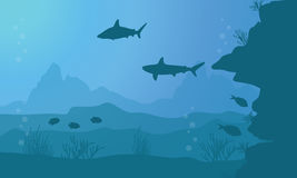 Collection of fish and coral reef on sea landscape. Vector art Royalty Free Stock Images