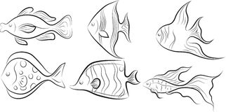 Collection of fishes. Stock Photo