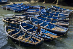 A collection of fishing boats tied up within the old fortress harbour at Essaouira in Morocco. Royalty Free Stock Photography