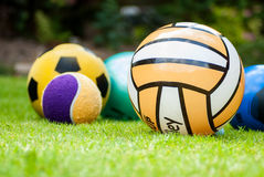 Collection of Five Balls in Grass stock image
