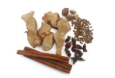 Collection five spicesanise, coriander seeds, galangal,cinnamon Royalty Free Stock Photography