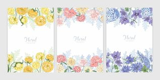 Collection of floral backgrounds or card templates with frames made of beautiful blooming wild flowers and flowering. Herbs and place for text. Elegant stock illustration