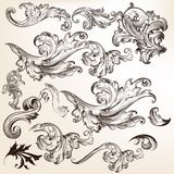 Collection of floral decorative vector swirls for design Stock Photos
