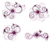 Collection of floral design elements Stock Photography