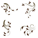 collection of floral elements Stock Images