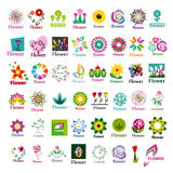 Collection of  floral logos Royalty Free Stock Images