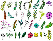 Collection of Floral Watercolor Paint Vector, Design Elements Royalty Free Stock Image