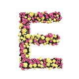 Collection florale fleurie de lettre d'alphabet Illustration Libre de Droits