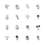 Collection of Flower icons Royalty Free Stock Photos
