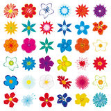 A collection of flowers Stock Images