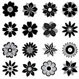 Graphical  flowers in black and white vector illustration
