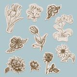 Collection of flowers in tags Royalty Free Stock Images