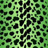 A collection of four different green animal print backgrounds. leopard Seamless repeatable. Eps 10 Vector. royalty free illustration