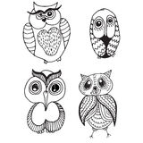 Collection of four different owls Royalty Free Stock Image