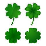 Collection of four-leaf clovers Stock Images