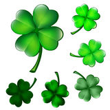 Collection of four-leaf clovers Stock Image