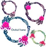 Collection of frames of pink and white orchids and colored leaves. Vector illustration. Collection of frames of pink and white orchids and leaves. Vector Royalty Free Illustration