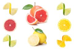 Collection of fresh citrus fruit slices isolated on white. Collage of lemon, grapefruit and orange stock images