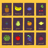 Collection of fresh, cute fruits. Stock Image