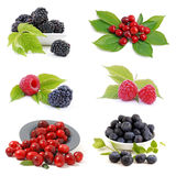 Fruit, berries Stock Photography