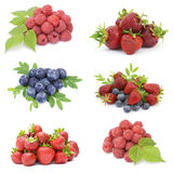 Collection of fresh fruits Stock Images