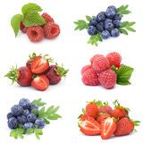 Collection of fresh fruits Royalty Free Stock Image