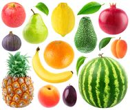 Collection of fresh fruits Royalty Free Stock Photo