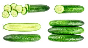 Collection of fresh green cucumbers isolated on white. Background. Set of multiple images. Part of series Royalty Free Stock Image