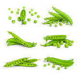 Collection of fresh green peas Royalty Free Stock Photos