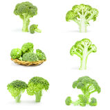 Collection of fresh head of broccoli on a white background clipping path. Collage of fresh green broccoli isolated on a white background cutout Stock Image