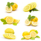 Collection of fresh lemons Royalty Free Stock Photo