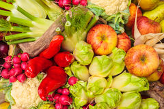 Collection of fresh organic food Stock Photography