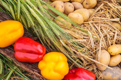 Collection of fresh organic food Royalty Free Stock Images
