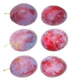 Collection fresh plum on white background, with clipping path Stock Image